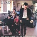 dogs pochette