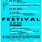 pzzle festival