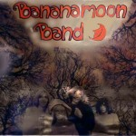bananamoon band pochette album