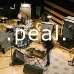 peal album