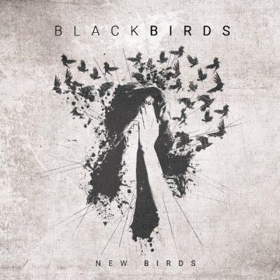 Blackbirds «New birds»